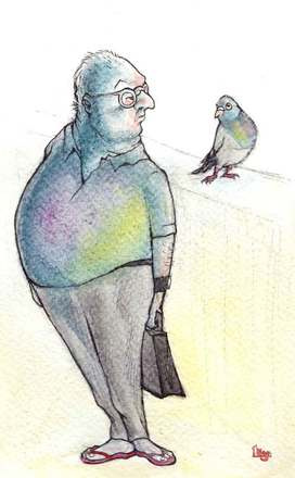 A Man who looks like a Pigeon. Fun animal watercolour Illustration by Divya George.