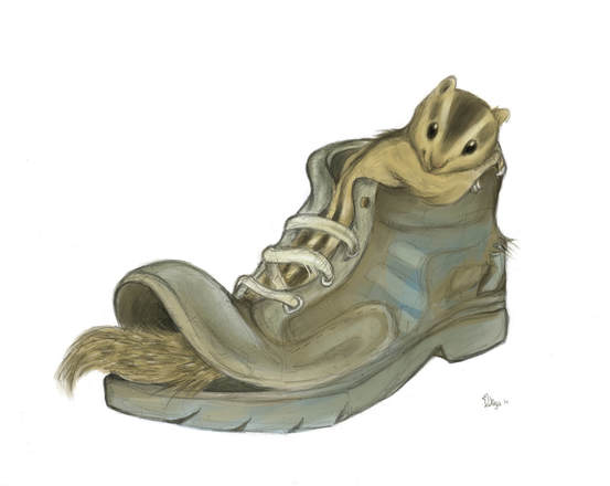 A digital illustration of a palm squirrel in a shoe by Divya George.