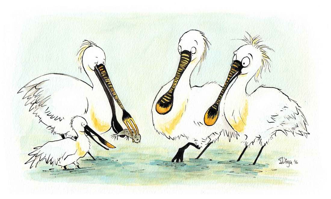 Two spoonbills are surprised to see birds with knives and forks as beaks. Fun animal illustration by Divya George.