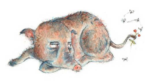 A bored boar. Watercolour illustration
