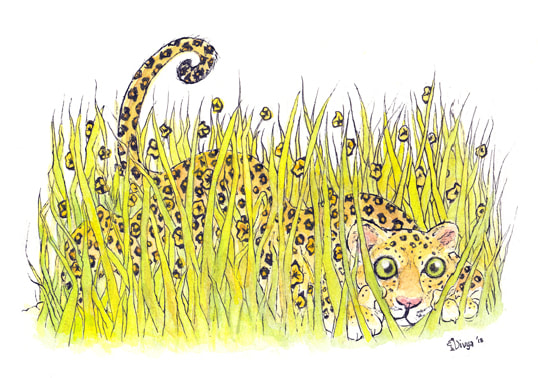 Leopard hiding in the grass. Animal illustration by Divya George.