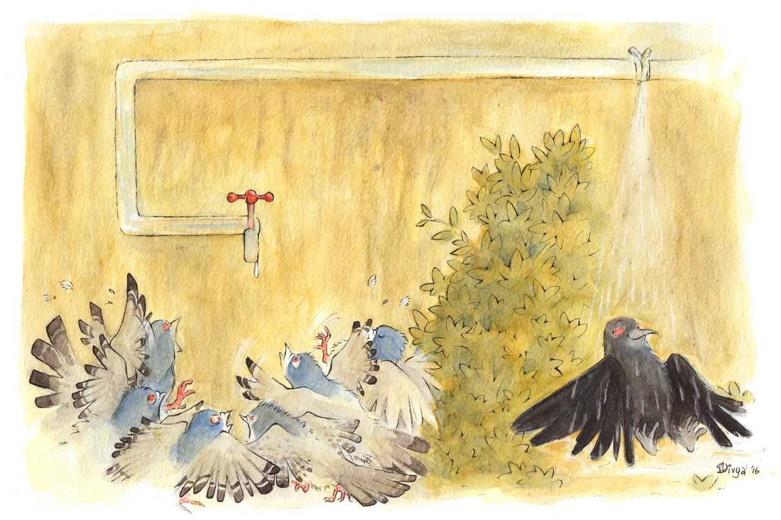 Pigeons are fighting for water while a crow enjoys a shower under the leaky pipe. Fun animal illustration by Divya George.