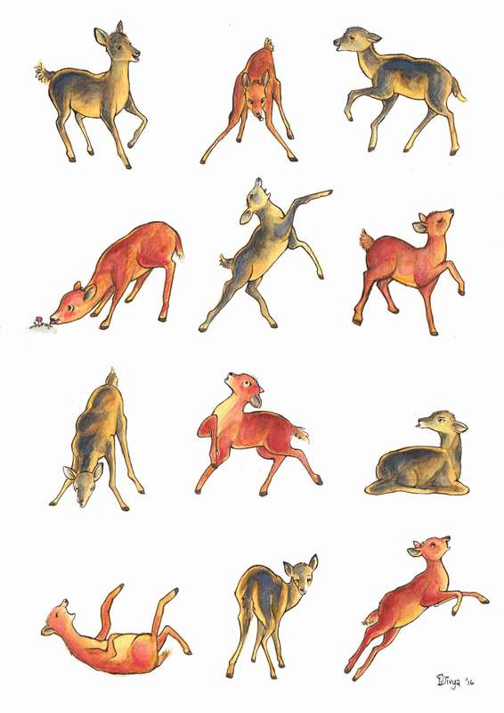 Deer in various poses. Fun animal pattern by Divya George.