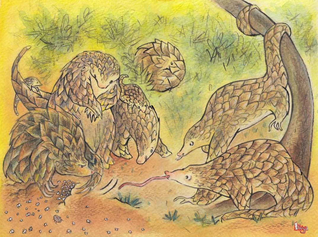 Pangolins playing around. Watercolour Illustration.