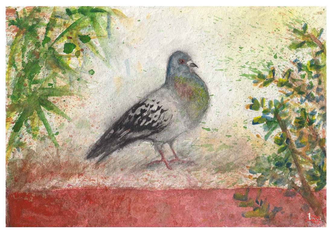 Watercolour Painting of a Pigeon. By Divya George.