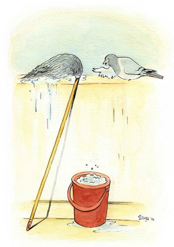 A pigeon thinks that a mop is another pigeon. Fun bird illustration by Divya George.