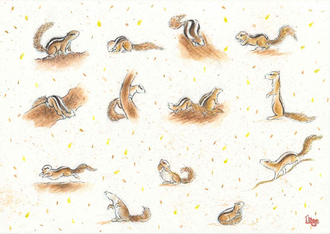 Squirrel pattern. Watercolour.